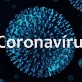 coronavirusministeriodasaude
